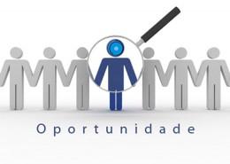 Oportunidades-de-negocios