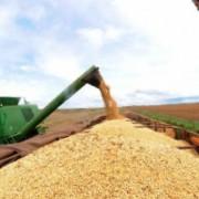 A previsão para a retomada econômica do instituto leva em conta a recuperação da indústria e da agropecuária que tem previsão de supersafras de soja e grãos em geral, diz diretor do Ipea. EBC